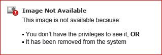 Add a record button to add the txt record